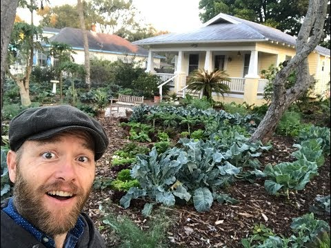 How to Grow Most of Your Food in 100 days