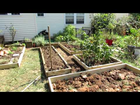 beds - I made over a large earth plot vegetable garden that was over-grown. Fall is a great time to makeover and redesign your vegetable garden. I dropped in a 2x10...