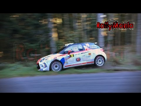 WRC Rallye de France - Alsace 2014 - Crash & Show [HD]