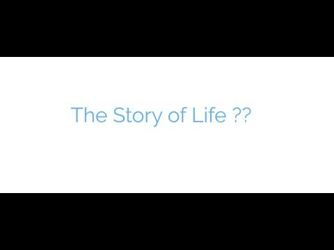 Life quotes - The Story of Life..