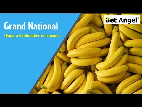 Grand National Tips- Why Using A Bookmaker Is Bananas!