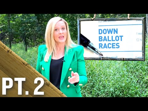 The Importance of Down Ballot Races Pt. 2 | Full Frontal on TBS