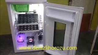 Tam Otomatik Kuluçka Makinası Mini Buzdolabından YCL KULUÇKA - 2 raflı 84 gelişim + 25 çıkımhttp://www.denizlihorozu.com/  dan inceleyin0 535 945 22 86 - DENİZLİ