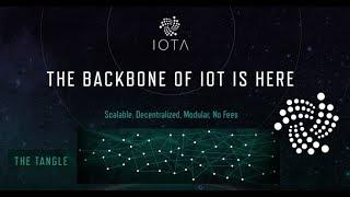 IOTA криптовалюта Обзор, отзывы  Кошелек IOTA  Как и где купить mIOTA?