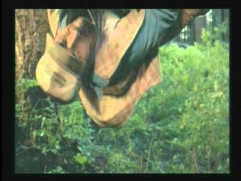 Chuck Norris - Forest Warrior