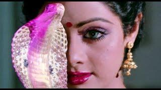 Video Nagina - Sridevi transformation scene MP3, 3GP, MP4, WEBM, AVI, FLV Desember 2018