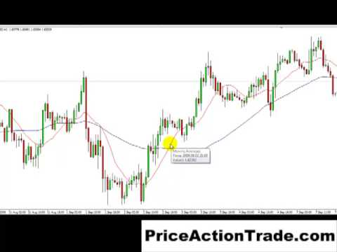 The Best FOREX Price Action Trading Indicator