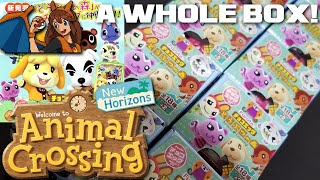 Opening A WHOLE BOX of Animal Crossing Chocolate Eggs from Japan for New Horizons! by Flammable Lizard