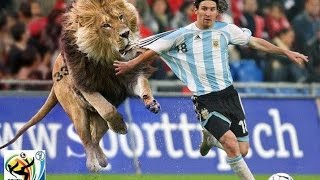 Funny Soccer Moments + Bonus When Soccer Fans Invade the Pitch! full download video download mp3 download music download