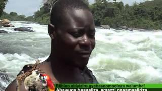Uganda Zaabu: Biibino Ebiyiriro Gyebasoomooleza Walumbe!