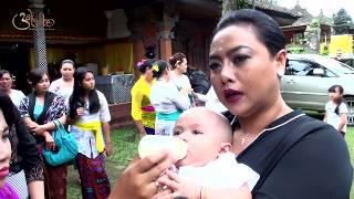 Video Otonan Taiga Kenzie Wiryatama | Putraku Tercinta MP3, 3GP, MP4, WEBM, AVI, FLV Maret 2019