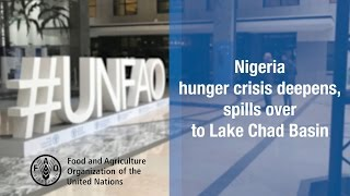 Nigeria hunger crisis deepens, spills over to Lake Chad Basin