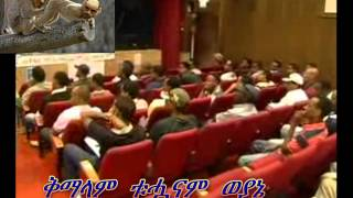 Woyanes Kicked Out From Ethiopian Meeting In Isreal.wmv