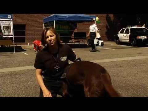 Narcotics K-9 Unit Visits West Hollywood Station