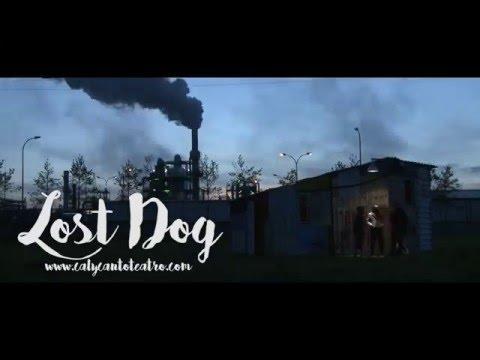 Lost Dog… perro perdido, Cal y Canto Teatro