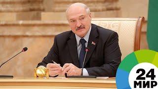Лукашенко предложил выращивать в Беларуси виноград по опыту Таджикистана - МИР 24