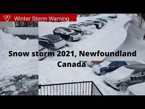 Snow storm 2021, Newfoundland & Labrador, Canada