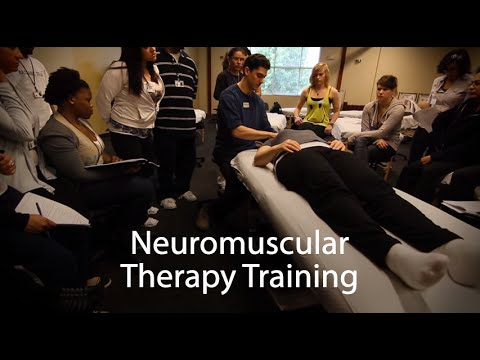 Neuromuscular Therapy (NMT) - Massage Therapy School - National Holistic Institute (NHI)