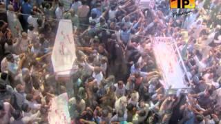 Shabir Ke Khatir Jeena Hai, Ali Safdar 2013-14