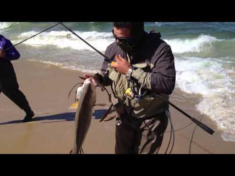 Pesca de Corvina 5,2 kg playa litoral central 4 de febrero de 2012.