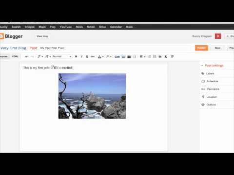 How to Use Google Blogger : Tumblr & Other Social Media