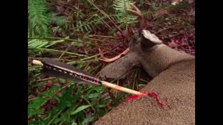 Video Primitive Archery Hunting for Deer. Otzi Arrow. Ishi Arrow. Traditional Bowhunting MP3, 3GP, MP4, WEBM, AVI, FLV Juni 2017
