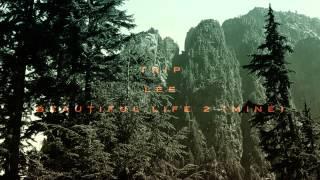Thumbnail for Trip Lee — Beautiful Life
