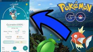 Pokémon GO Gyarados Perfeito & Novos Bugs by Pokémon GO Gameplay