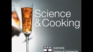 Bakistry: The Science Of Sweets | Lecture 9 (2012)