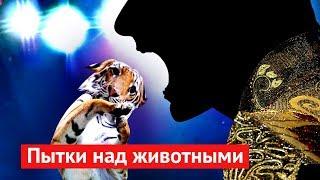 Живодёры просят Путина о поддержке