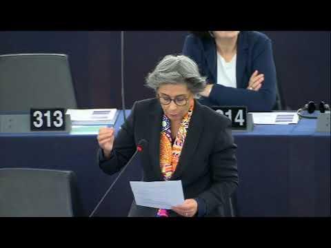 Isabel Santos debate sobre o Egito
