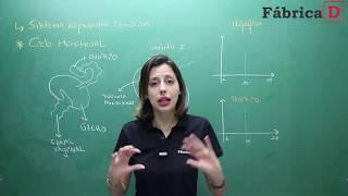 SISTEMA REPRODUTOR FEMININO-VÍDEO 4-PROF CAMILA CAVALIERI