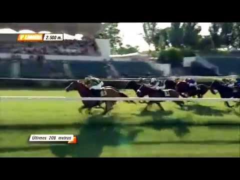 La carrera de caballos más emocionante y emotiva