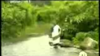 Zemari Fkadu Amare