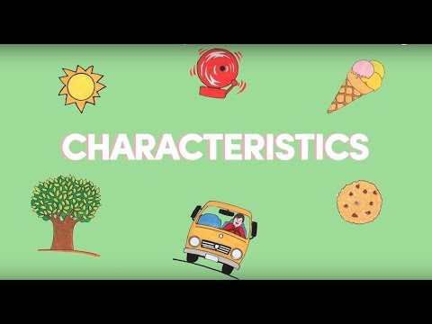 K12 Grade 1 - Science: Characteristics of the Things Around Us