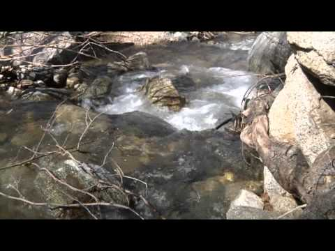 Upland's Water Resources and System