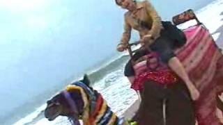 Puri India  city photos gallery : 7 Wonders of India: Puri Beach