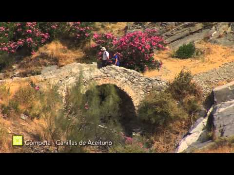 Der Große Wanderweg Málagas. Etappe 7: Cómpeta – Canillas de Aceituno (Deutsch)