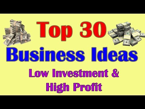 Tops 30 Business Ideas,  Best 30 Business Ideas Low Investment & High Profit