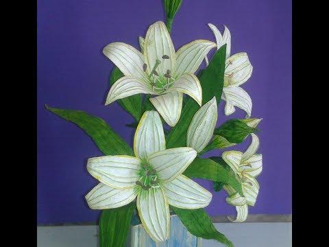 Flores Lírios