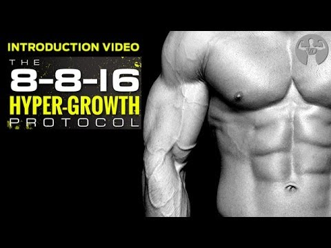 8-8-16 Muscle Building Workout, INTRODUCTION Workout Sheet…