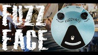 Dunlop JH Fuzz Face - Pedal Demo