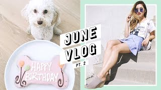 Here's the second installment of the June vlog and see a taste of my life in Los Angeles. I bounce from set to set, attend Vidcon, celebrate lots of birthdays (including our daughter) and get my teeth checked! If you're in the LA area and need to a great dentist, I highly recommend Dr. Maddahi: https://www.drmaddahi.com------------------------------------------💎 Subscribe and become a Jem today: http://bit.ly/2iLayjY 💎------------------------------------------➫  Instagram: http://instagram.com/imjennim➫ Twitter: http://twitter.com/imjennim➫ Facebook: http://facebook.com/imjennim➫ Spotify: http://bit.ly/2rctq05➫  Snapchat: http://snapchat.com/add/jennimsnaps------------------------------------------➫ Graphics by Dawn Lee: http://bit.ly/2a0wWpA➫ Video edited by Jenn Im------------------------------------------❐ MUSIC ❏➫ DJ Grumble's Soundcloud: http://bit.ly/1ElnUag➫ DJ Grumble's Spotify: http://spoti.fi/2s5bRD7------------------------------------------FTC: This video is NOT sponsored!