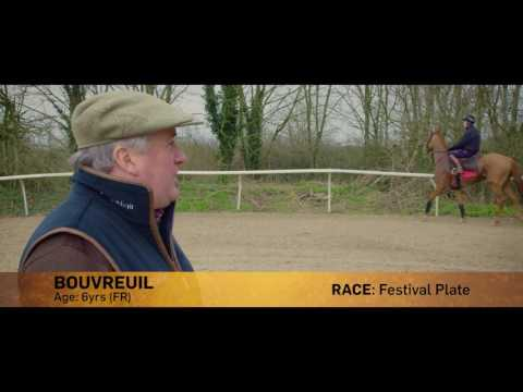 Paul Nicholls Cheltenham Day Three Runners Preview