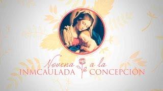 Novena a la Inmaculada Concepción- Día 8