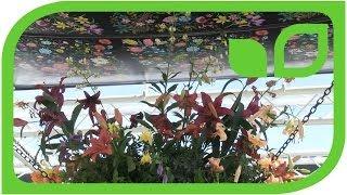 GUCCI Florales Design auch für den Garten (Chelsea 2014)