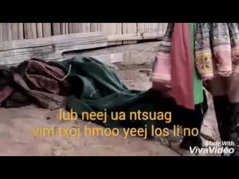 Lub neej ua ntsuag (видео)
