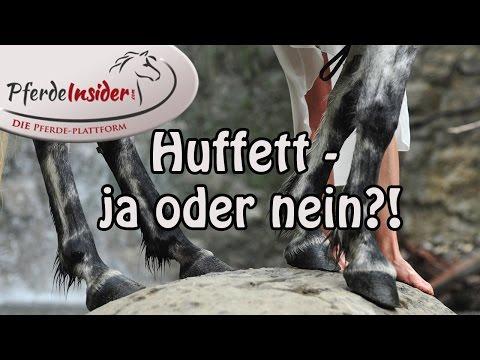 Richtige Hufpflege: Huffett ja oder nein?!
