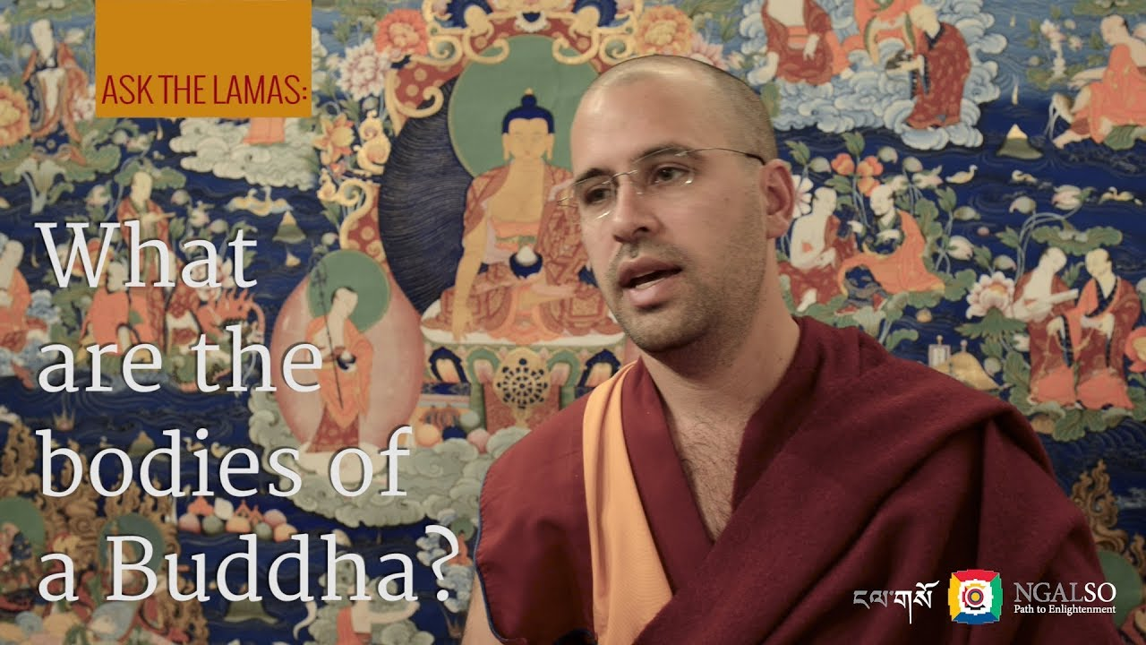What are the bodies of a Buddha?