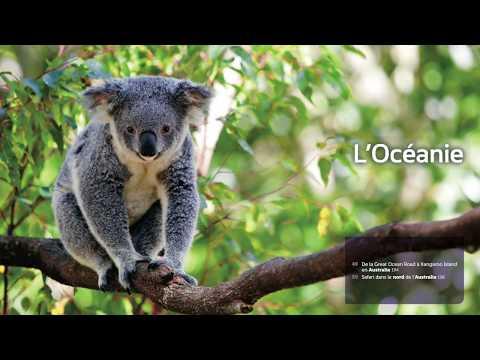 Voir les animaux du monde - 50 itinéraires de rêve